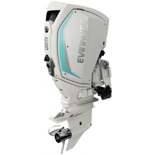 2020 EVINRUDE 250 HP - H250WXF